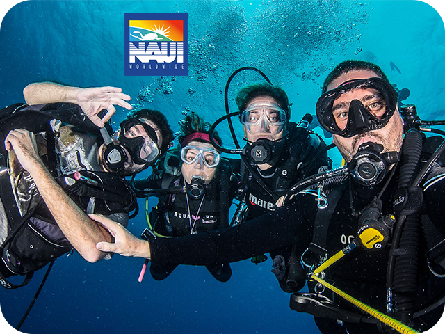 naui diving training service kuwait alboom marine
